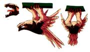 Str2 crocodile owl art