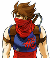 MarCap Strider Hiryu side.png