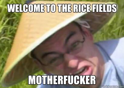 File:Ricefields.jpg