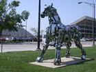 Wichita SU campus horse