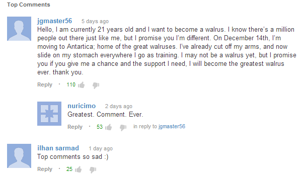 File:BEST COMMENTS EVER.png