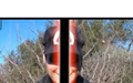 Thumbnail for version as of 20:32, March 18, 2009