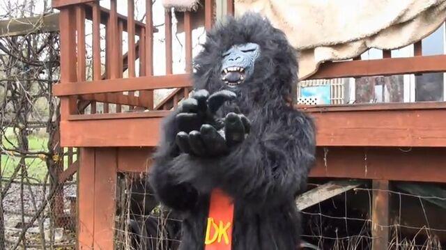 File:Donkey Kong S 4.jpg