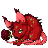 Wyllop cherry