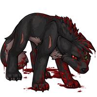Kumos bloodred