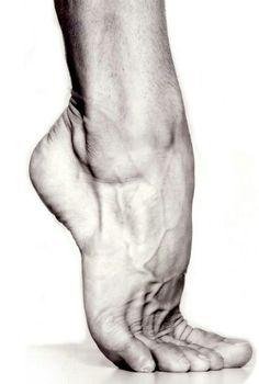 File:Foot.jpg