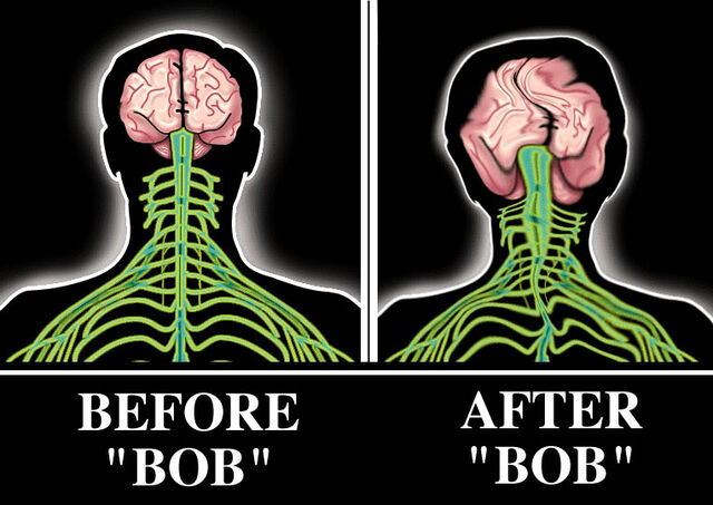 File:Bobbie brains.jpg