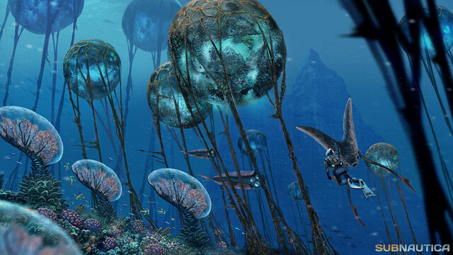 File:Coralreef.jpg