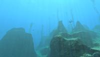 Crag Field Updated 8