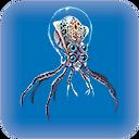 Crabsquid.png