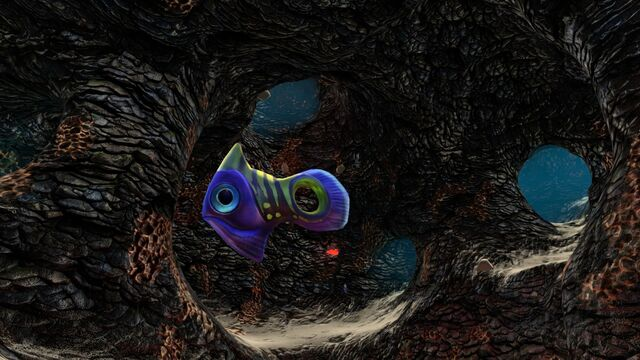 File:Holefish in lava cave.jpg