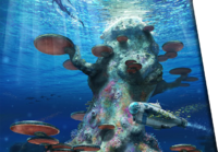 Coral Tree Concept