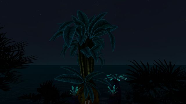 File:Floater Island (25).jpg