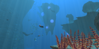 Underwater Islands/Gallery