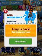 TonyBack