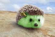 Shrek the hedgehog