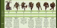 Swamp Orcs
