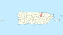300px-Locator map Puerto Rico Bayamon