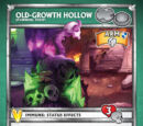 Old-Growth Hollow