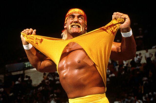 File:Hulk-hogan-wwe.jpg