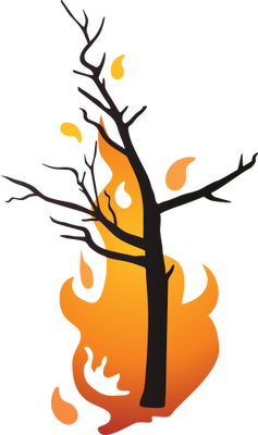 File:Forest Fire.png