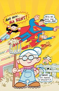 Superman Family Adventures 11