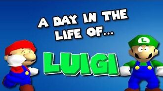 A Day In The Life of LUIGI