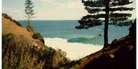 Barney Duffys, Norfolk Island, Australia