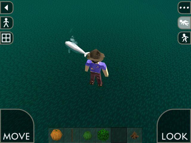 File:White whale.jpg