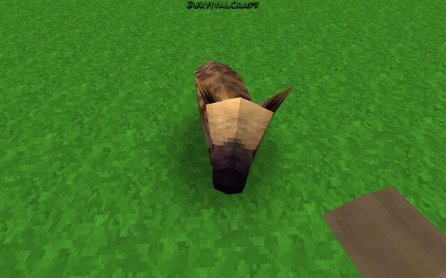 File:Survivalcraft 2014-11-21 22-30-15-.jpg