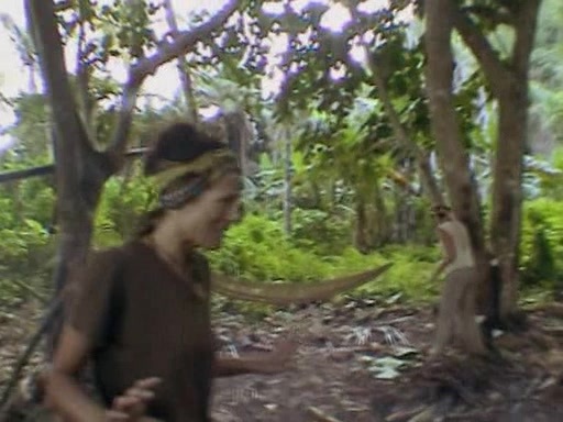 File:Survivor.Vanuatu.s09e05.Earthquakes.and.Shake-ups!.DVDrip 100.jpg