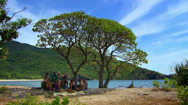 File:Survivor.S27E08.HDTV.XviD-AFG 201.jpg