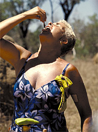 File:Maralyn worm.jpg