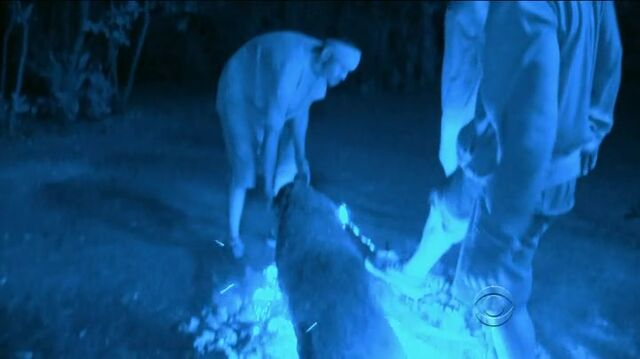 File:Survivor.s27e13.hdtv.x264-2hd 017.jpg