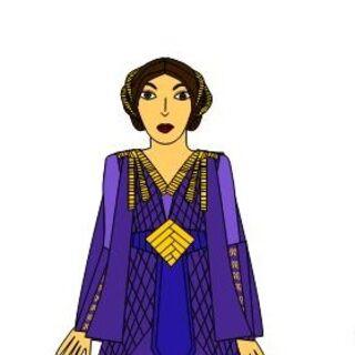 Purple senate gown