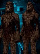 Wookiee g
