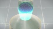 Experimented Brain