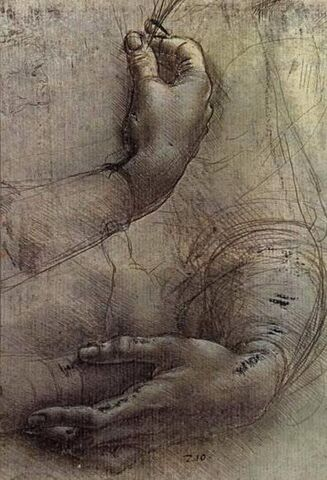 File:Study of Arms and Hands.jpg