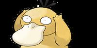 Psyduck (Pokémon)