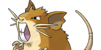 Raticate (Pokémon)