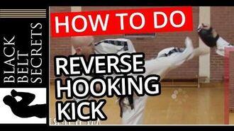 Reverse Hook Kick (Spinning Kick)