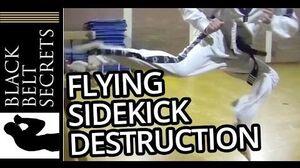 Flying Side Kick Jump Side Kick Destruction