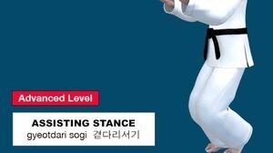 Taekwondo 2D - Assisting Stance ( 곁다리서기 gyeotdari sogi )