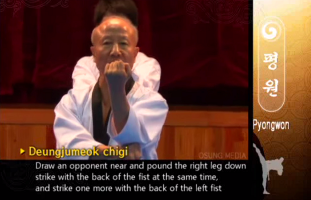 File:Pyngwon PullingBackfist.png