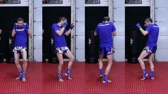 Tiger Stance Tutorial (Fighting Stance) Taekwondo for MMA & Kickboxing