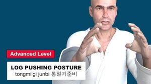 Taekwondo 2D - Log Pushing Posture ( 통밀기준비 tongmilgi-junbi )