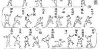 Taekwondo Forms