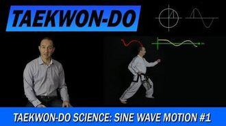 Taekwon-Do Science Sine Wave Motion 1
