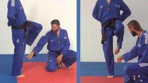 Tae Kwon Do - Crane Stance