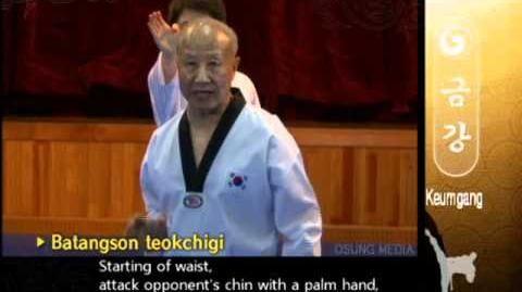 Grand Master Kyu Hyung Lee - WTF Poomsae Keumgang